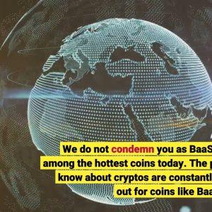 What is BaaSid BAAS ? Is it Worth It? Review inside