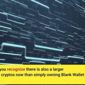 What is Blank Wallet BLANK ? Is it Worth It? Review inside