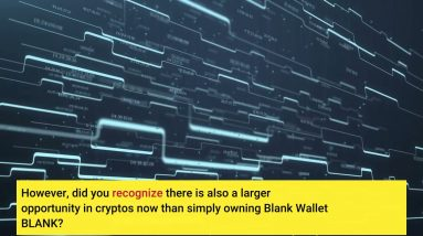 What is Blank Wallet BLANK ? Is it Worth It? Review inside