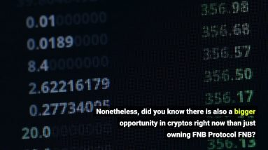 What is FNB Protocol FNB ? Is it Worth It? Review inside